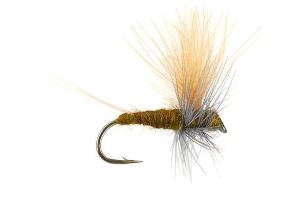 Olive Dun Cut Thorax - Dark Olive