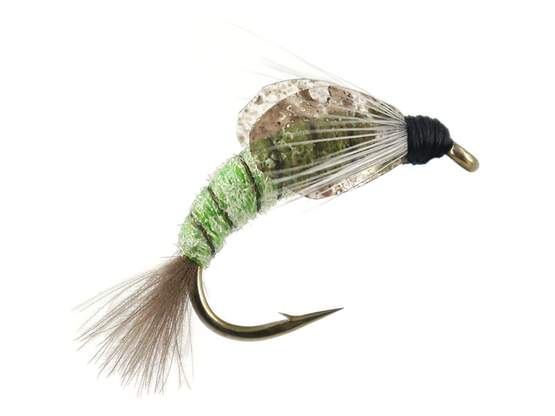 TG Caddis Pupa Color Factor - Verde Fluo