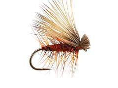 Red Superb Elk Hair Caddis 10