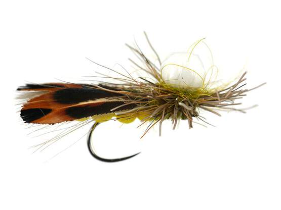 Gs Super Floating Sedge Yellow BL 10