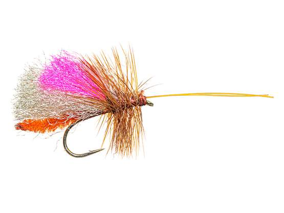 Slickwater Caddis - October 10