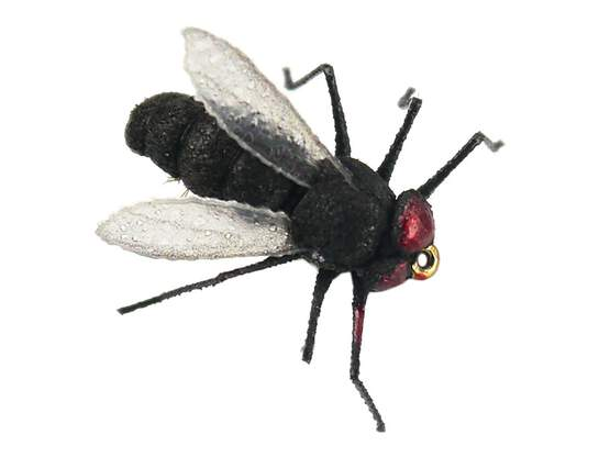 X-true Black Fly