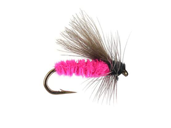 G1 Grayling CDC - Fucsia