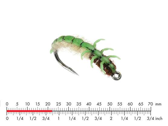 Caddis Larva L2 Green 22mm
