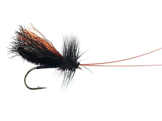 Slickwater Caddis - Black