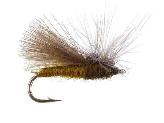 CDC Hackle Stacker Caddis- Olive 14