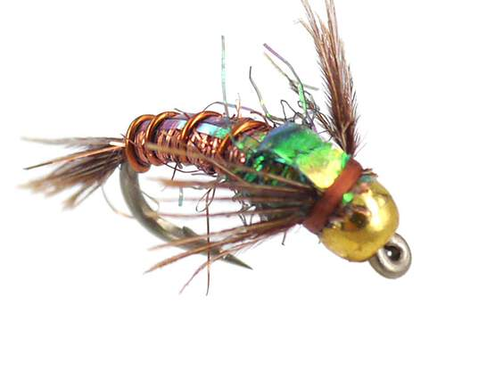 Kyles BH C-N Angel Hair Pheasant Tail 14