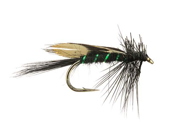 JC Jassid Variant Grayling Green Black